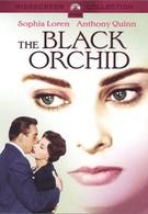 Черная орхидея (1958)