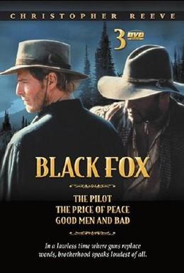 Постер фильма Черный Лис: Цена мира (1995)