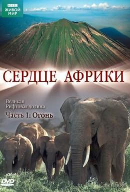 Постер фильма BBC: Сердце Африки (2010)