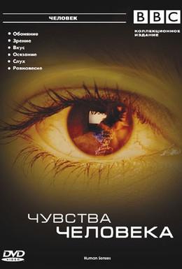 Постер фильма BBC: Чувства человека (2003)