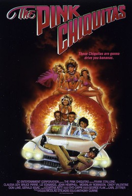 Постер фильма Розовая Чикита (1987)