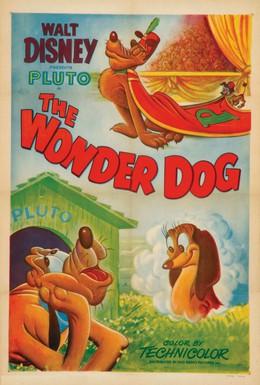 Постер фильма Чудесный пес (1950)