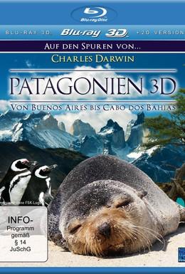 Постер фильма Патагония: По следам Дарвина 3D (2005)