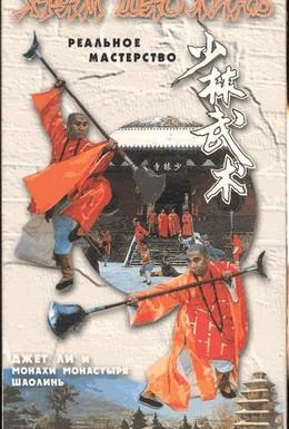 Постер фильма Тайное боевое искусство Шаолиня (1994)