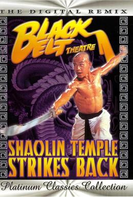 Постер фильма Храм Шаолинь наносит ответный удар (1981)