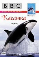 BBC: Касатка (2003)