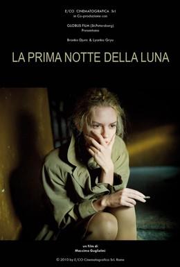 Постер фильма Светлая сторона Луны (2010)