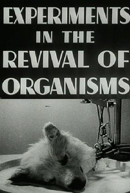 Постер фильма Эксперименты по оживлению организмов (1940)
