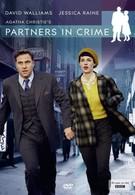 Партнёры по преступлению (2015)
