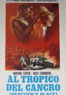 Тропик Рака (1972)