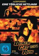 Бег черной кошки (1998)