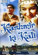 Красавица Кашмира (1964)