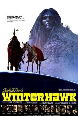 Постер фильма Зимний ястреб (1975)