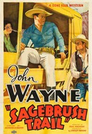 След в полыни (1933)