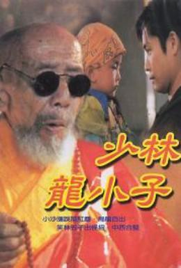 Постер фильма Посланники Шаолиня (1995)