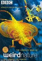BBC: Эти загадочные животные (2002)