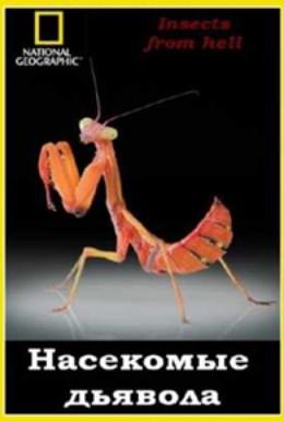 Постер фильма Эти кошмарные насекомые (2005)