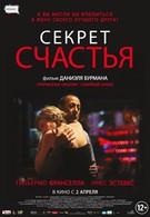 Секрет счастья (2014)