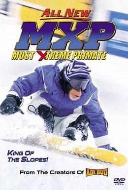 Постер фильма Король сноуборда (2004)