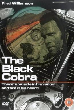Постер фильма Черная кобра (1987)