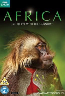 Постер фильма Африка (2013)