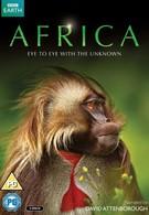 Африка (2013)