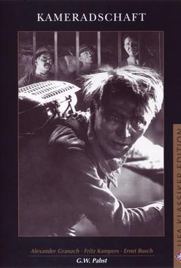 Постер фильма Солидарность (1931)