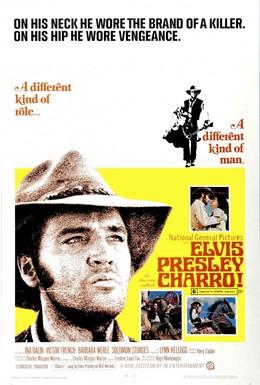 Постер фильма Чарро (1969)