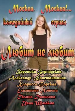 Постер фильма Любит не любит (2013)