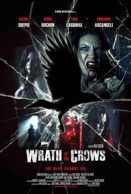 Постер фильма Гнев вороны (2013)