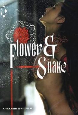 Постер фильма Цветок и змея (2004)