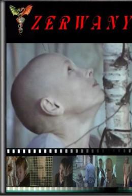 Постер фильма Сломленный (2003)