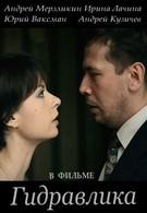 Гидравлика (2010)