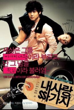 Постер фильма 100 дней с мистером Высокомерие (2004)