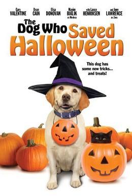 Постер фильма Собака, Которая Спасла Хэллоуин (2011)