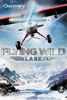 Постер фильма Полеты вглубь Аляски (2011)