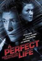 Идеальная жизнь (2010)
