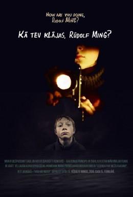 Постер фильма Как дела, Рудольф Минг? (2010)