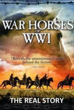Постер фильма Боевой конь: История (2012)