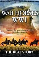 Боевой конь: История (2012)