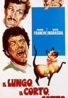 Длинный короткий кот (1967)