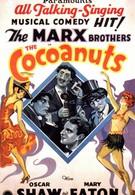Кокосовые орешки (1929)