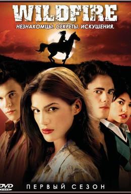 Постер фильма Дикий огонь (2005)