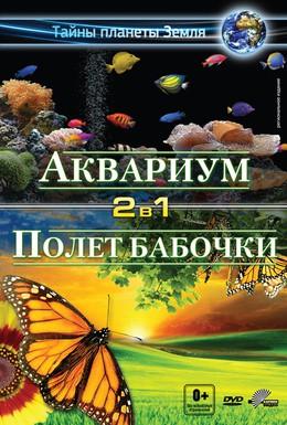 Постер фильма Аквариум 3D (2011)