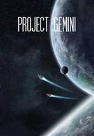 Проект Gemini (2017)