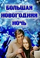 Большая новогодняя ночь (1978)