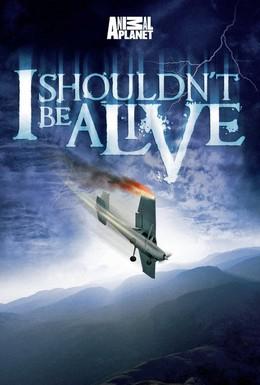 Постер фильма Я не должен был выжить! (2005)