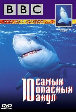 Постер фильма BBC: 10 самых опасных акул (2002)