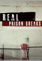 I Escaped: Real Prison Breaks (2011)