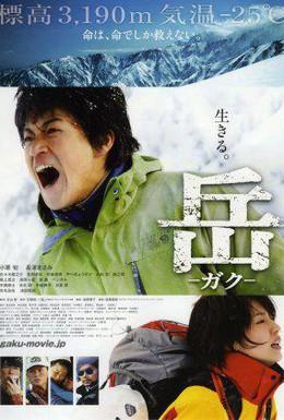 Постер фильма Вершина: Спасатели (2011)